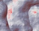 ambulatorio privato ginecologia
