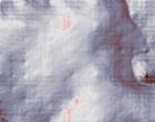 roma reparto ginecologia