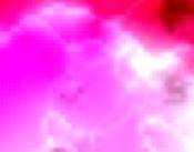 sito di ginecologia